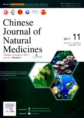 《中国天然药物(英文版)》核心期刊