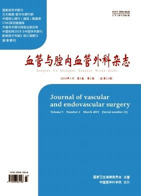 《血管与腔内血管外科杂志》
