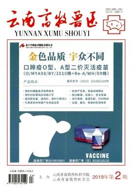 《云南畜牧兽医》双月刊征稿