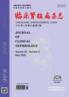《临床肾脏病杂志》月刊征稿