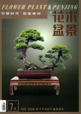 《花木盆景(盆景赏石)》月刊征稿